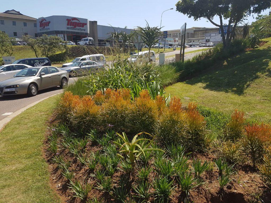 Ballito Gardens Flourish