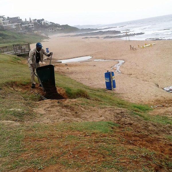 UIP staff member repairing erosion at Willards beach